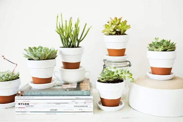 DIY Dipped Terracotta Pots